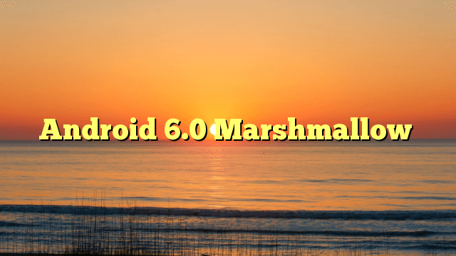 Android.Marshmallow