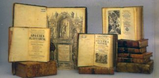 collections hero history archive books