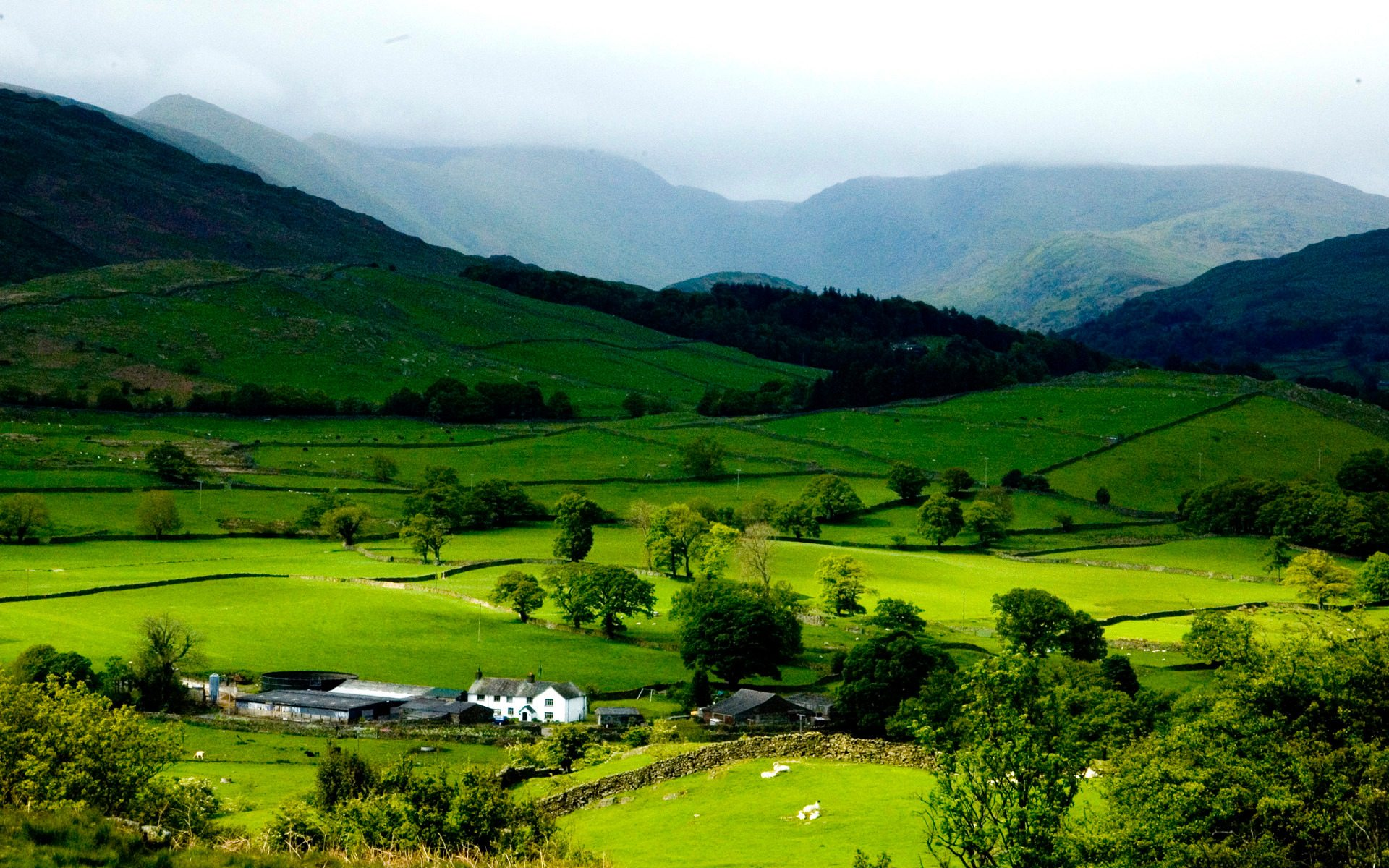 ziro-valley