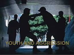 Concept Analysis: Aggression