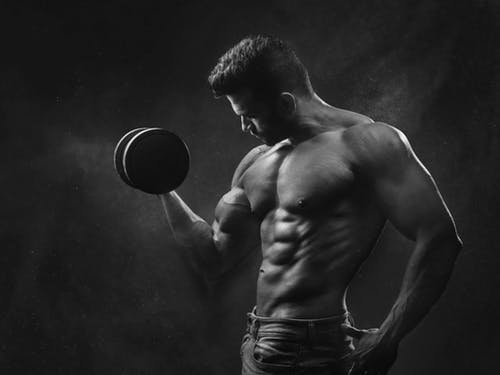 Bulk Or Cut: Which Is Best and For Who?