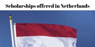 Scholarships offered in Netherlands