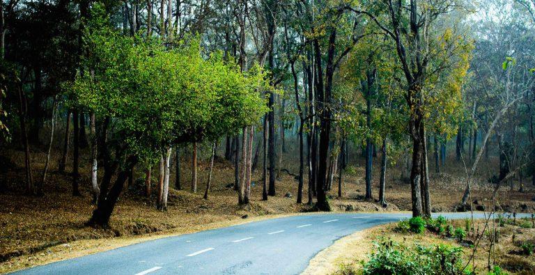 Top 5 beautiful destinations in Dooars