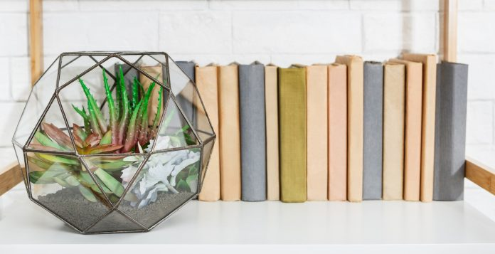 Green home decor concept