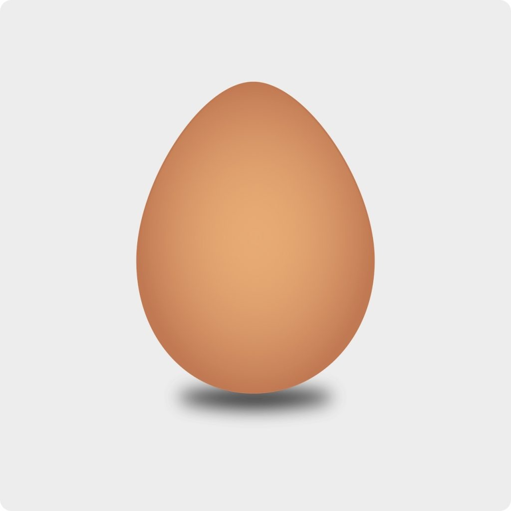 This image has an empty alt attribute; its file name is egg-2026981_1280-1024x1024.jpg